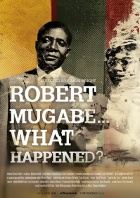 Robert Mugabe - What happened?