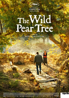 The Wild Pear Tree (Flyer)