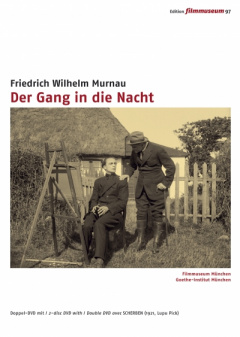 Der Gang in die Nacht (DVD Edition Filmmuseum)