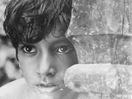 Photo: Pather Panchali - Song of the Little Road
