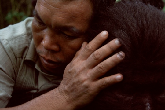 Photo: Uncle Boonmee Who Can Recall His Past Lives