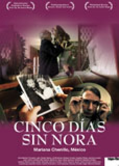 Cinco dias sin Nora flyer