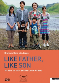 Like Father, Like Son - Tel père, tel fils (DVD)